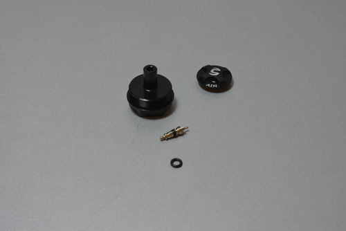 Lefty Schrader Plug Kit Oliver